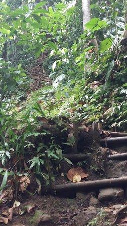 Petit-Bourg, Guadeloupe: 20160829_104745_large.jpg
