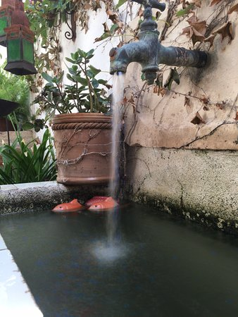 Cottage La Venteta: Und noch ein Brunnen....