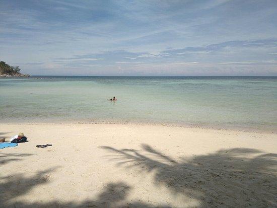 Salad Beach: IMG_20160902_104958_large.jpg