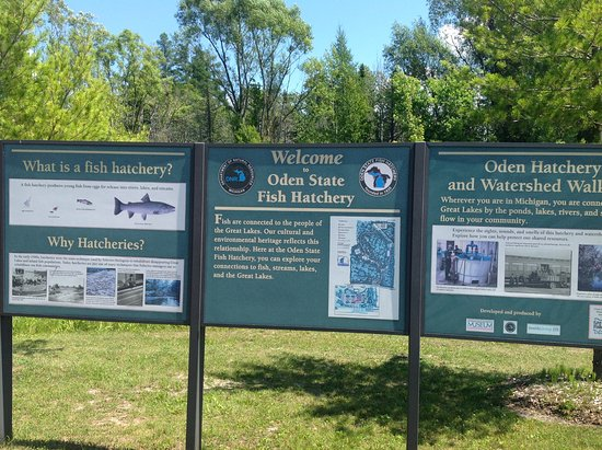 The Oden State Fish Hatchery: Entrance Sign