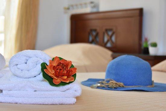 Hotel Hermes: standart double room