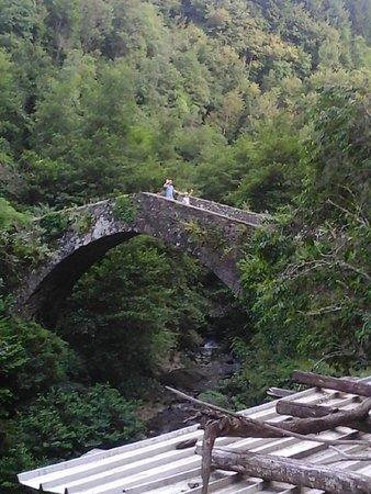 Castiglione di Garfagnana, Italia: een middeleeuwse brug midden in het bos en in de buurt