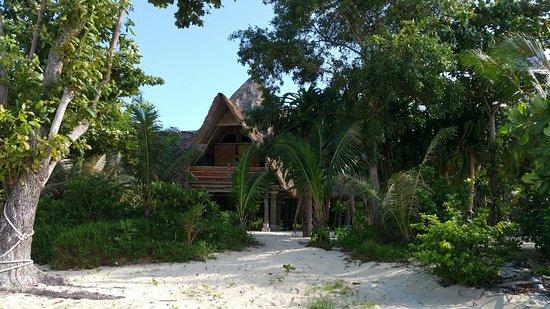 Pulau Joyo Photo