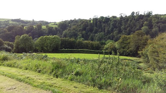 Dulverton, UK: 20160901_164616_large.jpg