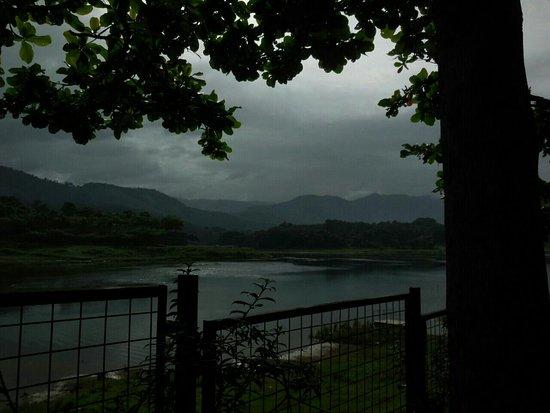 Thodupuzha, Hindistan: IMG-20160825-WA0005_large.jpg
