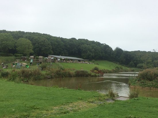 Marhamchurch, UK: The Weir