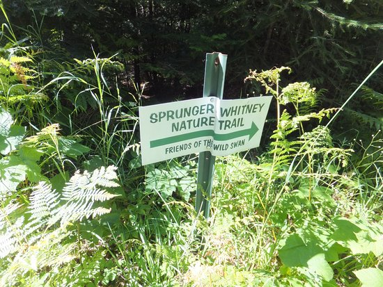 Laughing Horse Lodge : Welcome to the Sprunger Whitney Nature Trail