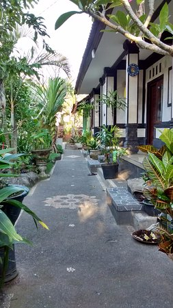 Citrus Tree Villas - Kunyit Photo
