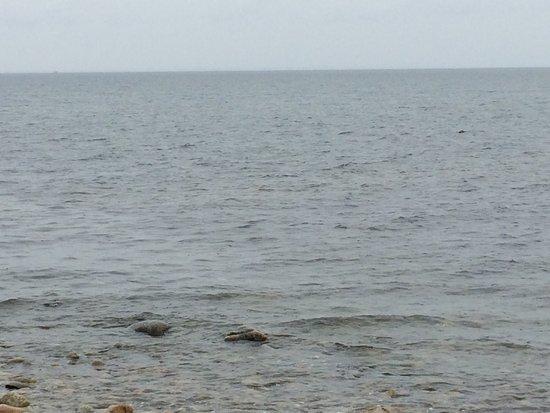 Chappaquiddick: photo3.jpg