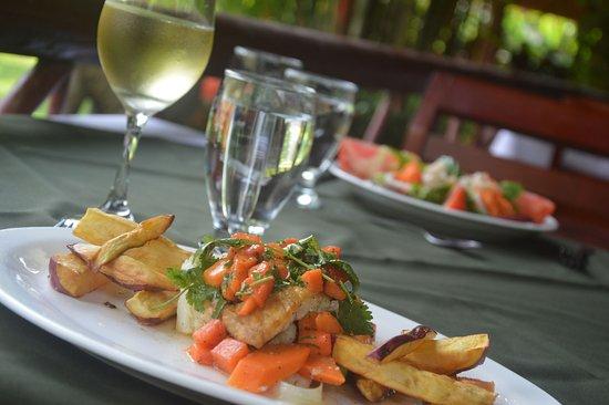Restaurant & Bar El Rancho : 100% Organic Dishes