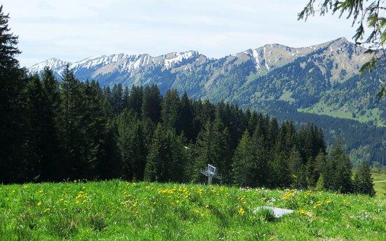 nach 10 Minuten Fahrt mit der Bergbahn Ofterschwang Blick nach West auf die Nagelfluhkette