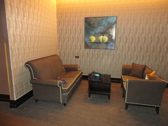 Aqua Palace Hotel: Salon