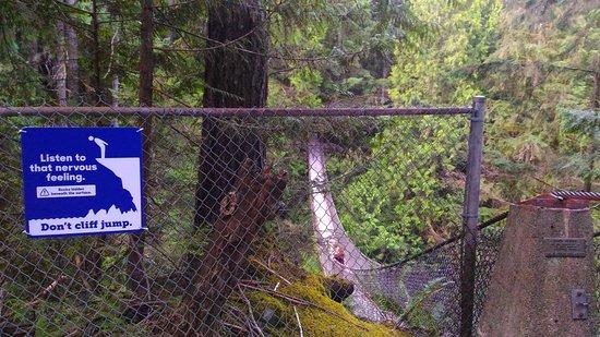 Vancouver Utara, Kanada: Lynn Valley Suspension Bridge
