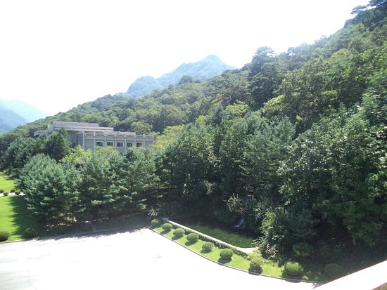 Hyangsan, Nord Korea: The forest oround