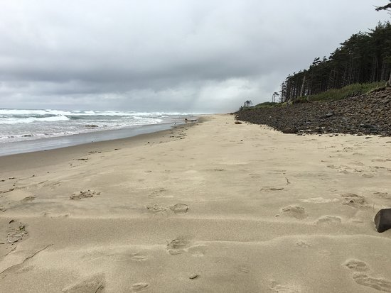 Cape Lookout State Park: photo4.jpg