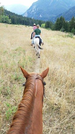 63 Ranch: 20160831_155335_large.jpg