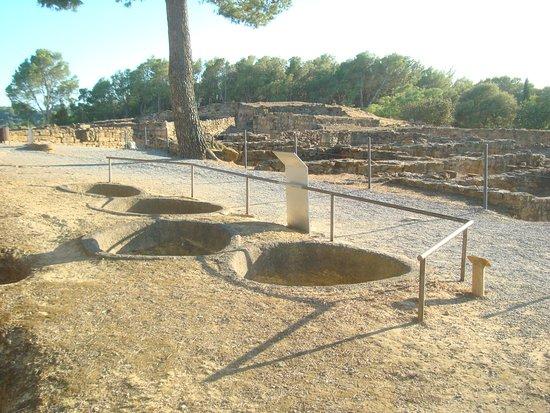 Museo Arqueológico de Cataluña-Ullastret: Yacimiento Íbero de Ullastret