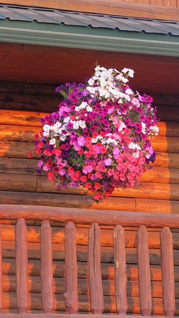 Island Park, ID: Huge hanging baskets of flowers hung along the upstairs walkway.