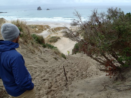Otago Peninsula: This was not from the top. This was were the sand kicked in. wife almost at bottom.