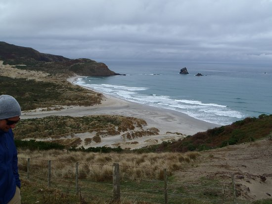 Otago Peninsula: From the top.