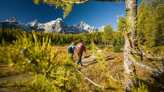 Lake Louise, Canada: Hiking through Larch Valley