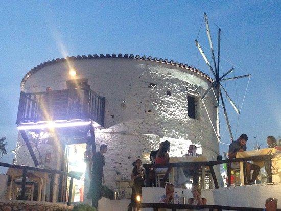The Windmill Restaurant: photo1.jpg