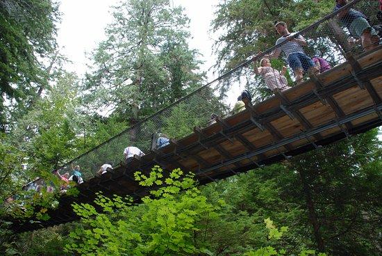 Vancouver Utara, Kanada: The Suspension Bridge