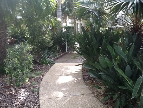 Coolum Beach, Austrália: Walkways beween pools