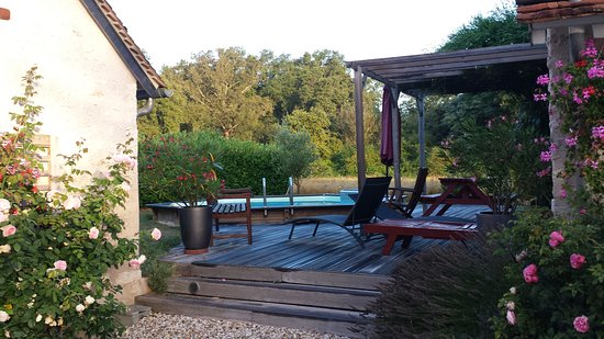 Chitenay, ฝรั่งเศส: Pool area