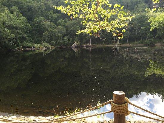 Lastminute hotels in Baishan