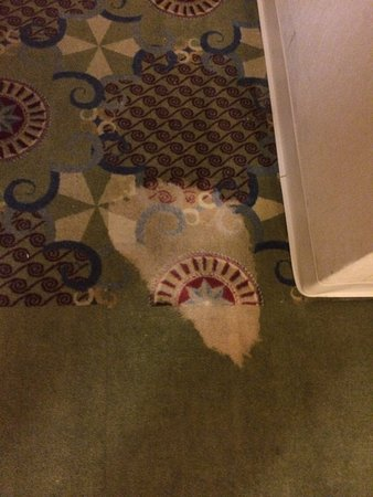 Wyndham Cleveland at Playhouse Square: Stained carpets