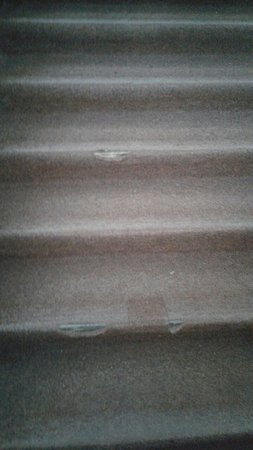 Sporthotel Kurzovni: dangerous carpet on stairs