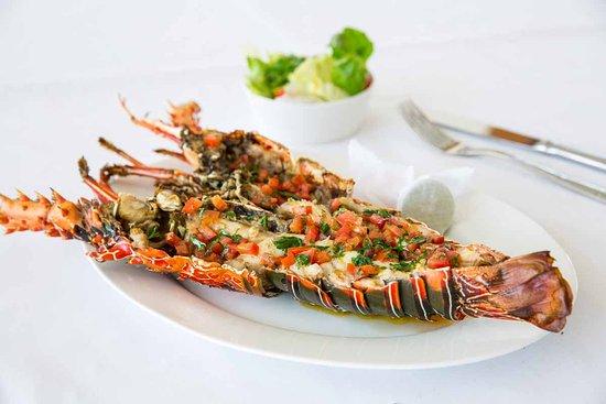 Dining Room Fresh Zanzibar Lobster