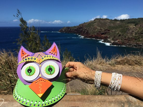 Paia, Hawái: Getting Serious with Owly in West Maui