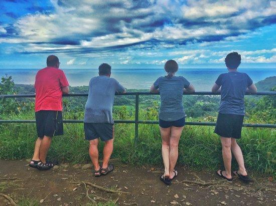 Paia, ฮาวาย: Wailua Wayside on the Road to Hana