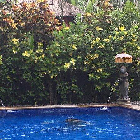 Tropical Bali Hotel: photo0.jpg