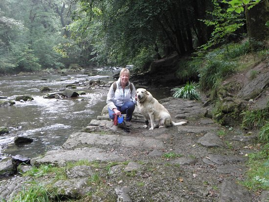 Parco Nazionale di Exmoor, UK: Drizzly day at Tarr Steps bridge