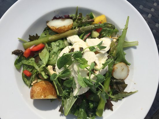 The Jolly Thresher: Salad with mozarella