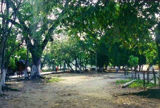 Parque lineal Bosque Santander