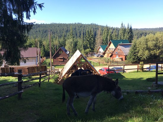 Belis, Rumania: Smida Park