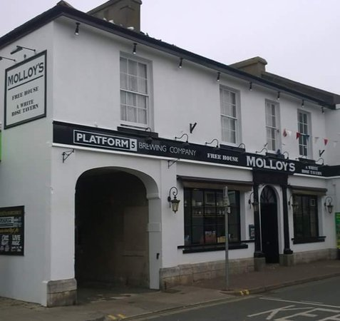 Molloy's