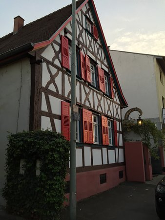 Lampertheim, Deutschland: photo7.jpg