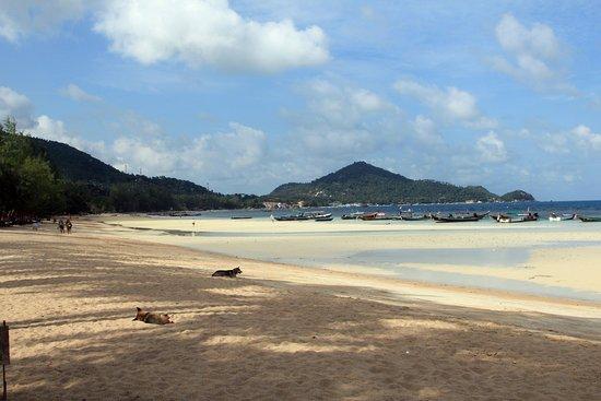 Palm Leaf Resort : Strand - Blick Richtung Sairee