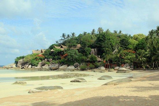 Palm Leaf Resort : Strand - rechts vom Palm Leaf