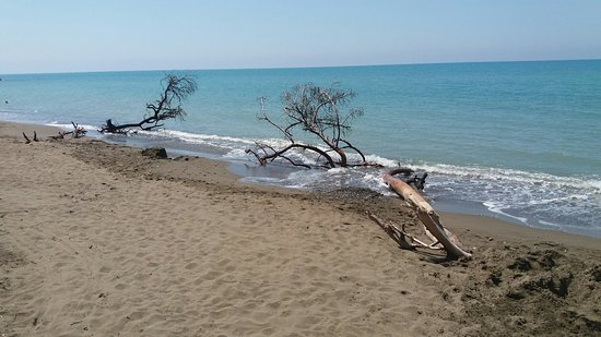 Marina di Cecina, Italy: 20160707_124627_large.jpg