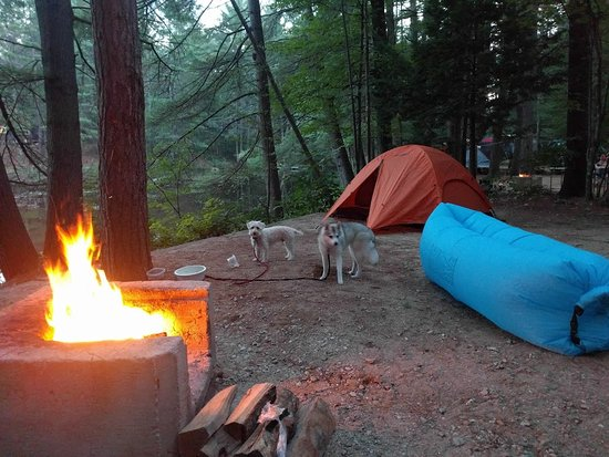 Chocorua Camping Village: Tent site near lake with power hook-up and water (and doggies)