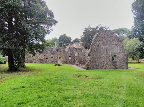 Portumna Castle: IMG_20160830_123241_large.jpg