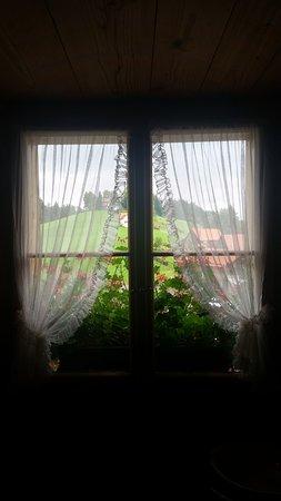 Teufen, Switzerland: window from inside