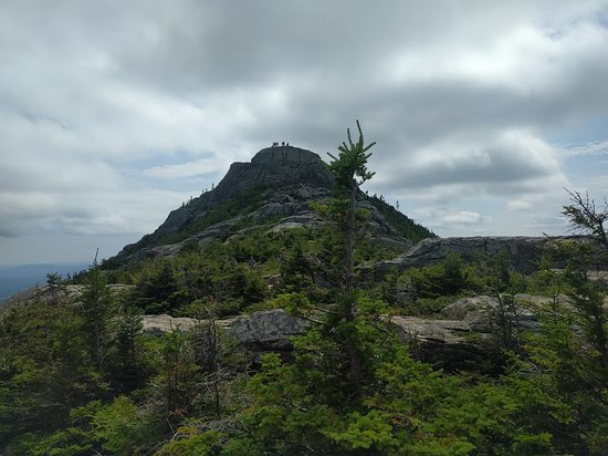 Chocorua Summit as seen from the end of the treeline on the Champney Falls Trail approach