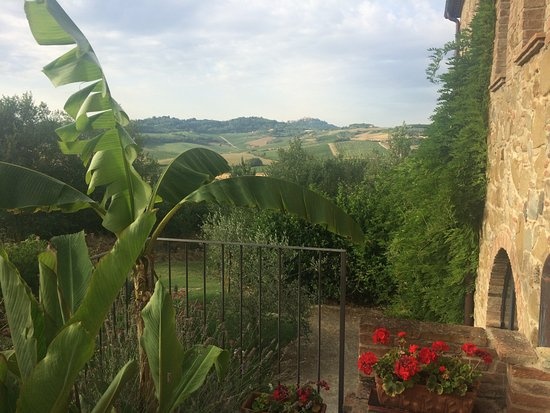 La Casina : The view from the patio